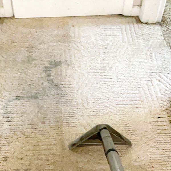 Carpet Cleaning and Carpet Restoration Services. Carpet Cleaning. Tile Cleaning. Accurate Carpet Cleaning Services