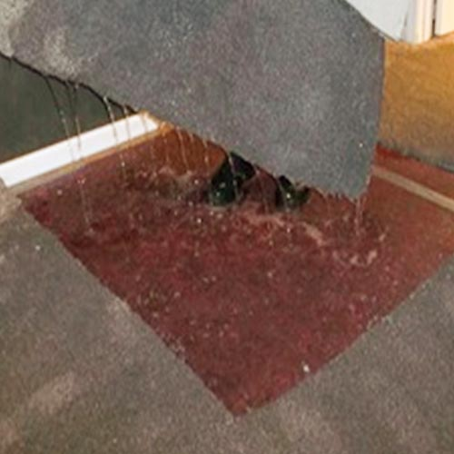 Accurate Carpet Cleaning Services Flood clean up. Water Damage clean up